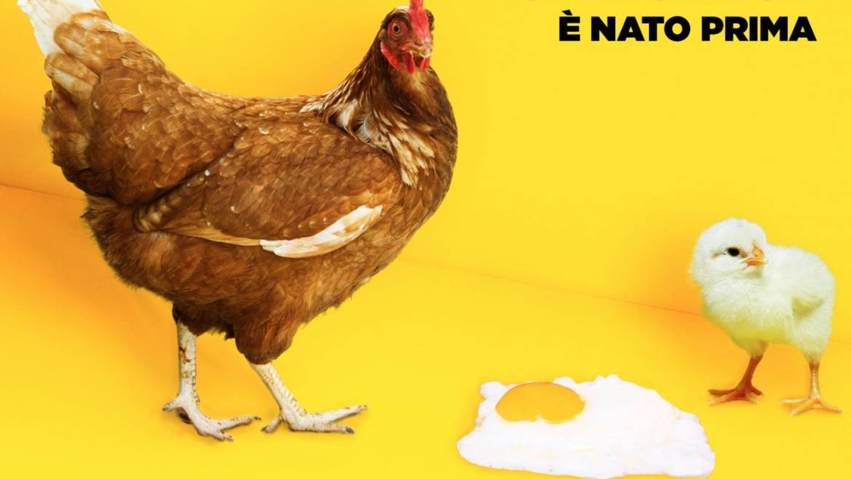 Contest intergenerazionale NON IMPORTA CHI E' NATO PRIMA: ecco i nostri 6 vincitori